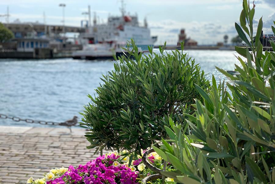 Helsingborg, staty, barnfamilj, fotografi i Helsingborg, Kärnan, I Tell Your Story, turist i Helsingborg, tura